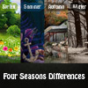 Four Seasons Differences