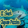 12 Shark Jigsaw Puzzles