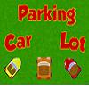 Amazing Car Parking Lot