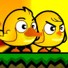 Chicken Duck Brothers