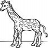 Coloring Giraffes -1