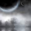 Dense fog find numbers