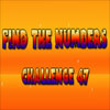Find the Numbers 47