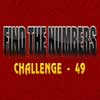 Find the Numbers 49