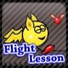 Flight Lesson