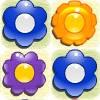 FlowerMatch