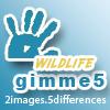 gimme5-wildlife