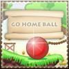 Go Home Ball