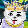 Kitty Cat Fashion Styling