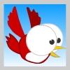 Little Red Flying Bird