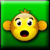 Monkey journey