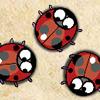 Nervous Ladybug 3