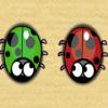 Nervous Ladybug
