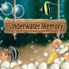 New Underwater Memory