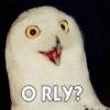 Orly Slider