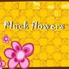 PluckFlowers