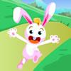 Rabbit Run Run Run