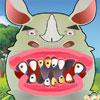 Rhino Tooth Problems