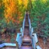 Roche-A-Cri State Park Jigsaw