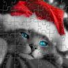 Santa Cat Puzzle