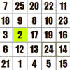 Schulte Grid Puzzle