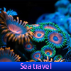 Sea travel. Find objects