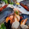 Seafood Hidden Images