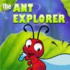 The Ant Explorer