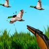 The Duck Hunter