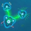 War of Cells