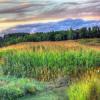 Wyalusing State Park Jigsaw