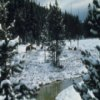 Yellowstone Jigsaw