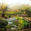 Zen Garden Jigsaw