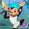 Zippy Monkey