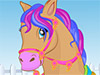 Horse Hair Studio